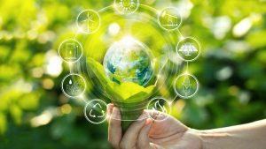 پرسشنامه مسئولیت اجتماعی زیست محیطی سازمان – رحمان و پست (۲۰۱۲)