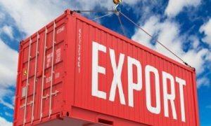 پرسشنامه ارزیابی عملکرد صادرات مورای و همکاران (۲۰۱۱)
