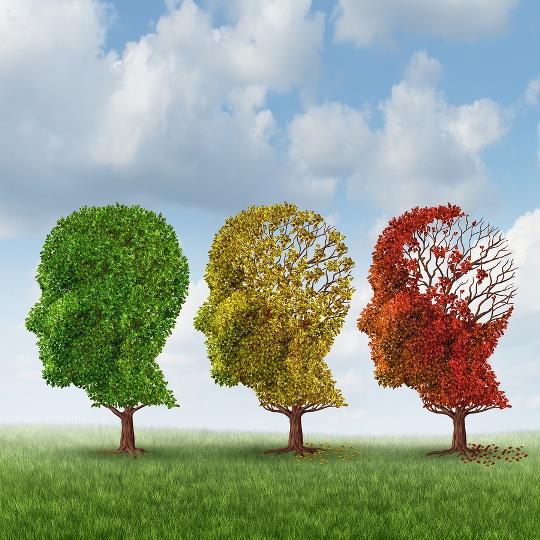 پرسشنامه بهزیستی روانشناختی ریف (فرم ۵۴ سوالی)