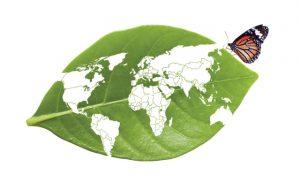 پرسشنامه ارزش ویژه برند سبز – انجی و همکاران (۲۰۱۴)
