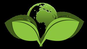 پرسشنامه ارزش ویژه برند سبز – چن (۲۰۱۰)