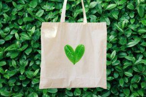 پرسشنامه رفتار خرید سبز – تانگ (۲۰۱۴)