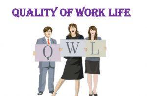 پرسشنامه کیفیت زندگی کاری – الیزور و شای (۱۹۹۰)